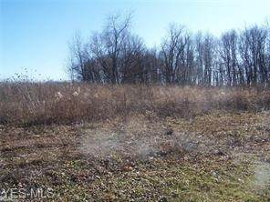 8622 Rohrer Road, Orrville, OH 44667 (MLS #4166046) :: RE/MAX Trends Realty