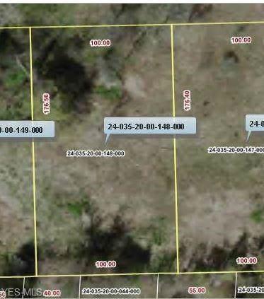 V/L Stanton (#148), Mantua, OH 44255 (MLS #4166196) :: The Art of Real Estate