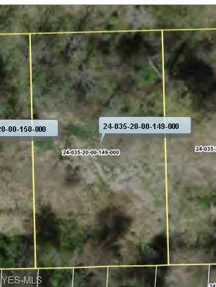 V/L Stanton (#149), Mantua, OH 44255 (MLS #4166199) :: The Art of Real Estate