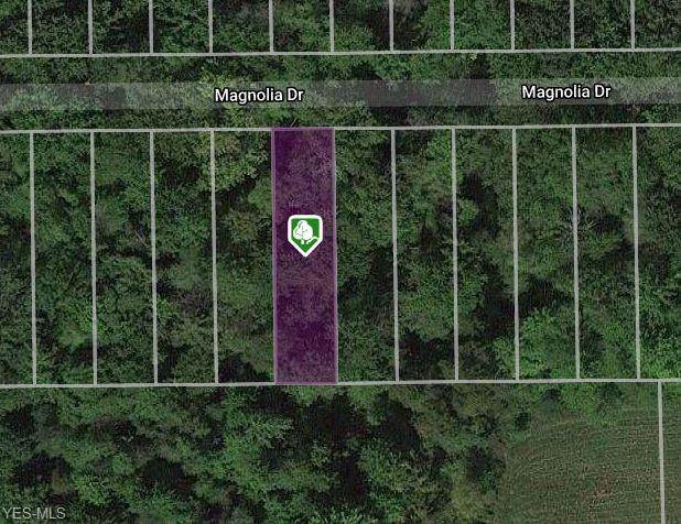 V/L Magnolia Drive, Madison, OH 44057 (MLS #4168142) :: Select Properties Realty