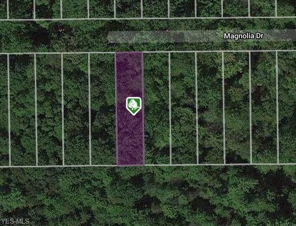 V/L Magnolia Drive, Madison, OH 44057 (MLS #4168146) :: Keller Williams Chervenic Realty