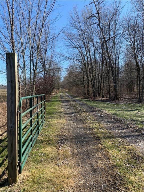 7052 Ridge Road, Cortland, OH 44410 (MLS #4169028) :: RE/MAX Trends Realty