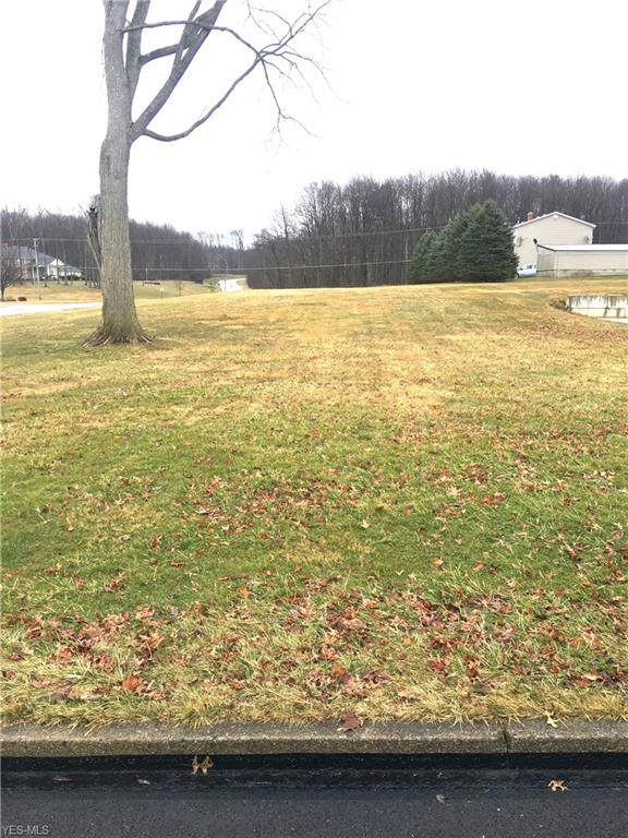 Acatello Place, Poland, OH 44514 (MLS #4170532) :: RE/MAX Trends Realty