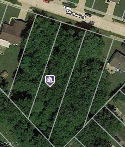 165 Michael Court, Painesville, OH 44077 (MLS #4172239) :: Tammy Grogan and Associates at Cutler Real Estate