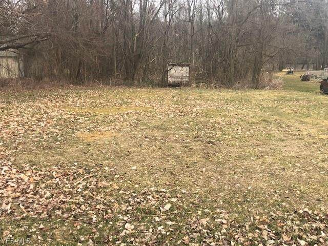15007 South Street, Birmingham, OH 44889 (MLS #4174584) :: RE/MAX Valley Real Estate