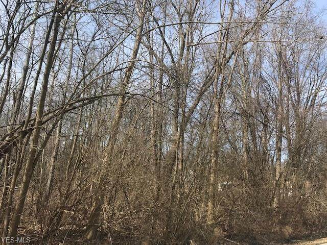 Carruthers Road, Tallmadge, OH 44278 (MLS #4174928) :: Tammy Grogan and Associates at Cutler Real Estate