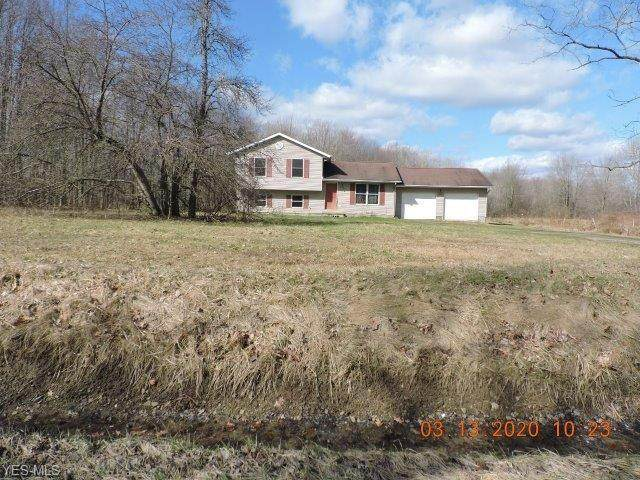 5509 State Route 193, Andover, OH 44003 (MLS #4175318) :: RE/MAX Trends Realty
