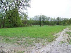 4291 N Broadway State Rd 534, Geneva, OH 44041 (MLS #4175756) :: RE/MAX Trends Realty