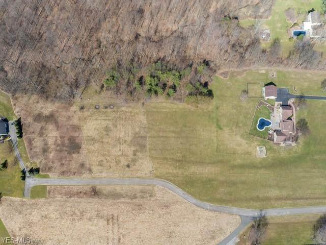 N Gulch Lane, Warren, OH 44484 (MLS #4176087) :: The Crockett Team, Howard Hanna