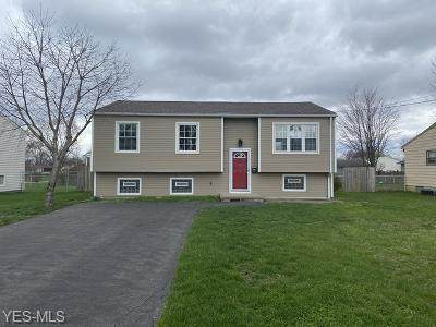 370 Dehoff Drive, Youngstown, OH 44515 (MLS #4178845) :: RE/MAX Valley Real Estate