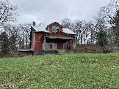 40151 State Route 39, Wellsville, OH 43968 (MLS #4179073) :: RE/MAX Valley Real Estate
