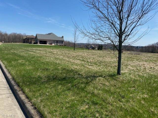 Mystic Rock Road, Columbiana, OH 44408 (MLS #4180031) :: RE/MAX Valley Real Estate