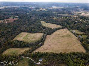 Palmer Road, Mount Perry, OH 43760 (MLS #4181660) :: The Holden Agency