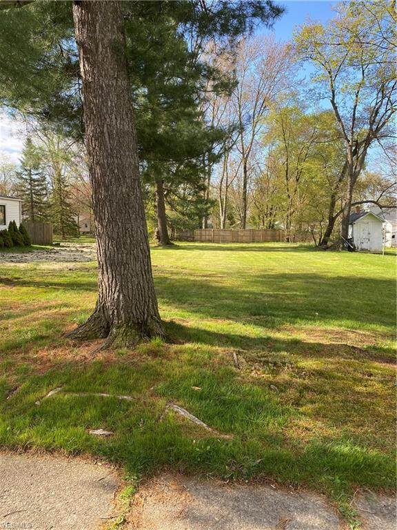 Euclid Avenue, Wadsworth, OH 44281 (MLS #4187661) :: RE/MAX Valley Real Estate