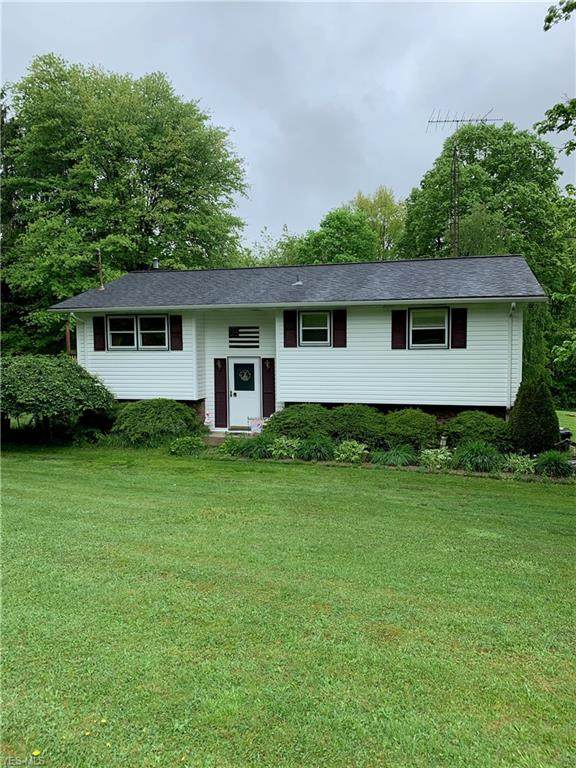 16550 Longs Church Road, East Liverpool, OH 43920 (MLS #4190772) :: Tammy Grogan and Associates at Cutler Real Estate