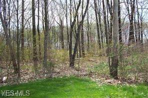 Ohio, Youngstown, OH 44505 (MLS #4190783) :: Tammy Grogan and Associates at Cutler Real Estate