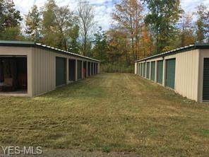 4189 State Route 5, Newton Falls, OH 44444 (MLS #4192925) :: Tammy Grogan and Associates at Cutler Real Estate