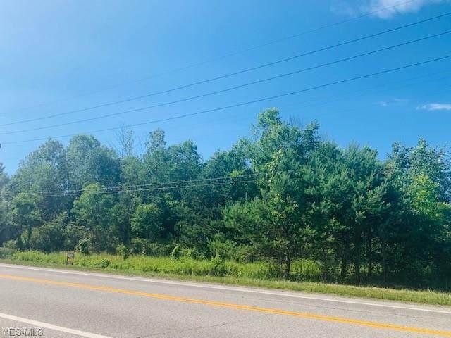 Mayfield Road, Huntsburg, OH 44046 (MLS #4195941) :: The Crockett Team, Howard Hanna