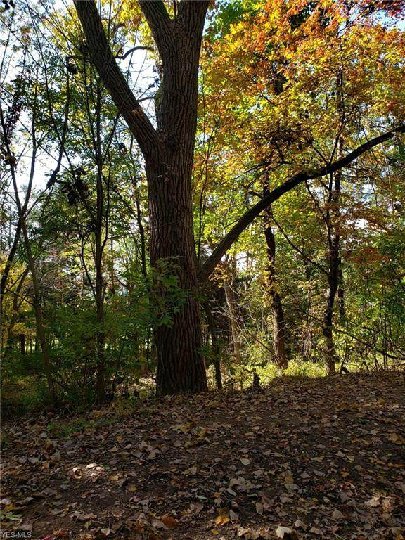 2201 Reimer Road, Wadsworth, OH 44281 (MLS #4196147) :: RE/MAX Trends Realty