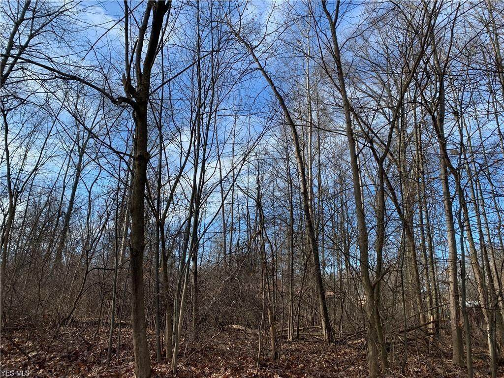 Hoffman Circle - Photo 1