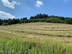 9185 Tunnel Hill Road NE, Mineral City, OH 44656 (MLS #4200894) :: The Holden Agency