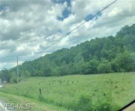 0 Harriettsville Road, Lower Salem, OH 45745 (MLS #4203272) :: The Holden Agency
