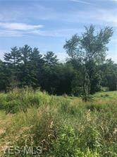 0 Professional Drive, Barnesville, OH 43713 (MLS #4204014) :: RE/MAX Trends Realty