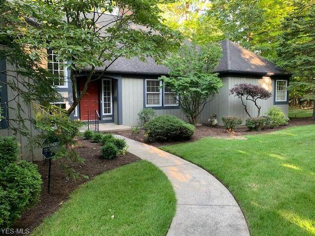 1900 Stonelake Drive, Lyndhurst, OH 44122 (MLS #4205542) :: RE/MAX Trends Realty