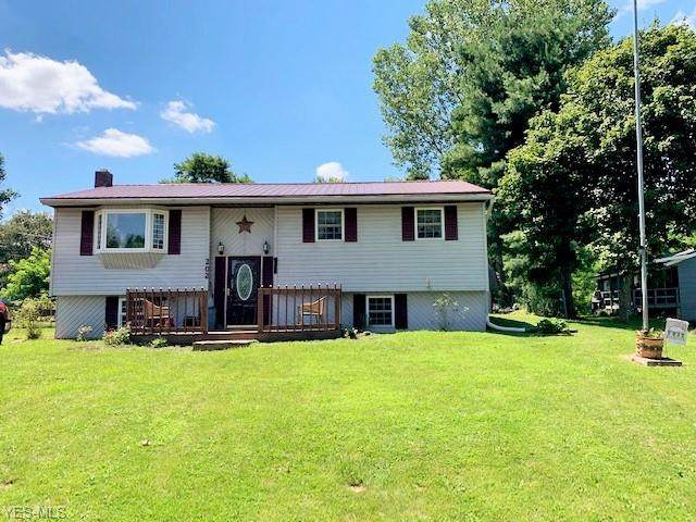 202 Patricia Drive, Byesville, OH 43723 (MLS #4205729) :: Tammy Grogan and Associates at Cutler Real Estate