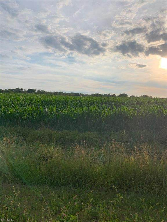 Sterling, Lot 49 Road, Burbank, OH 44214 (MLS #4206609) :: RE/MAX Trends Realty