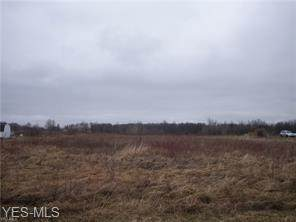 Township Road 150, Sullivan, OH 44880 (MLS #4207902) :: Select Properties Realty