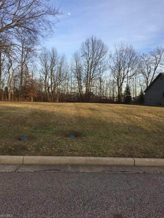 Emalene Road, Wooster, OH 44691 (MLS #4208175) :: Tammy Grogan and Associates at Cutler Real Estate