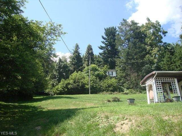 1166 Colerain Pike, Martins Ferry, OH 43935 (MLS #4208375) :: The Jess Nader Team | RE/MAX Pathway