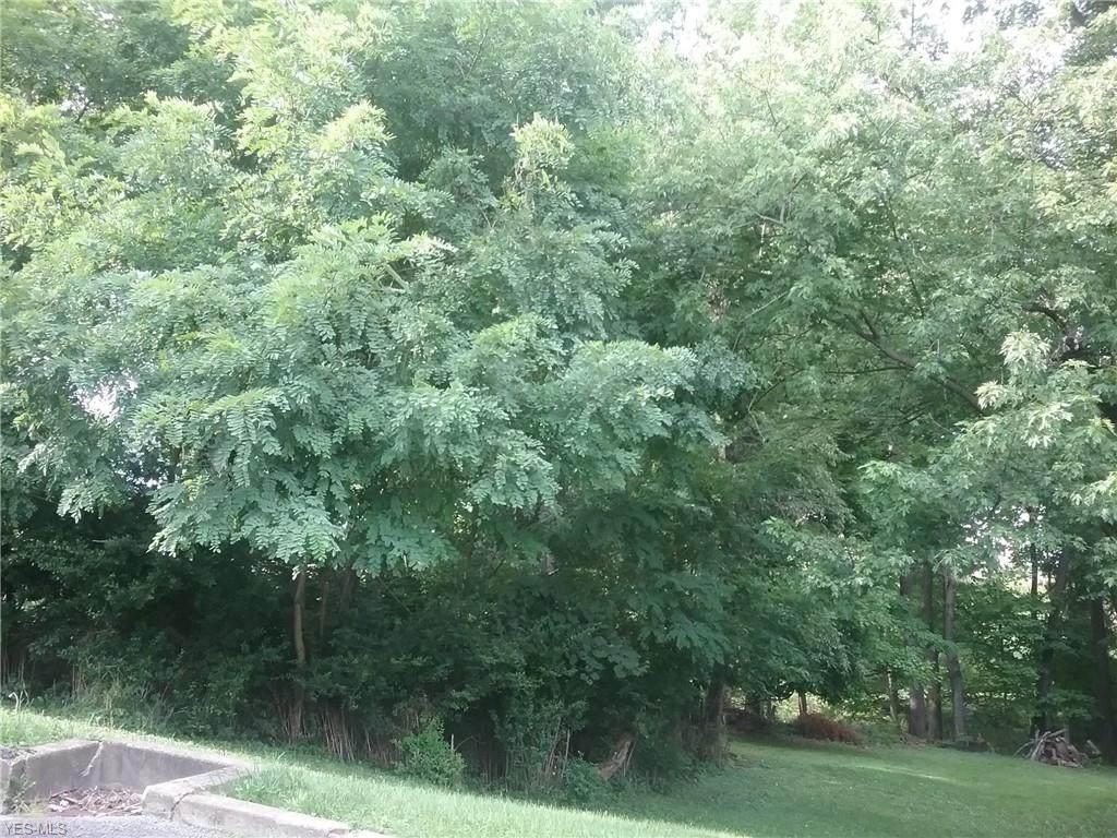 Woodland Avenue - Photo 1