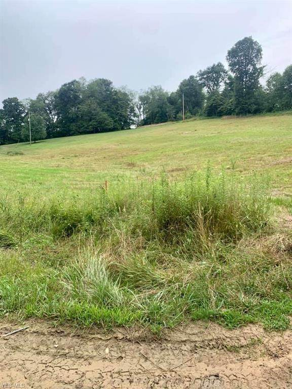 NW Cherry Run Road, Strasburg, OH 44680 (MLS #4213480) :: RE/MAX Valley Real Estate