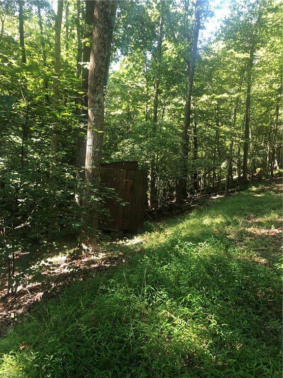 Elliott Run Road, West Union, WV 26456 (MLS #4213646) :: RE/MAX Valley Real Estate