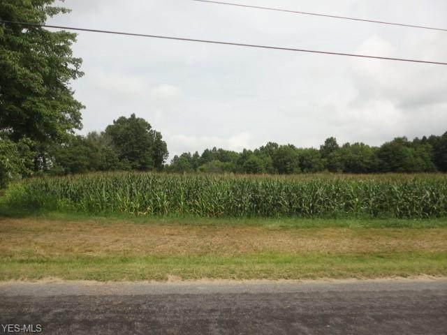 Heisler Road, North Benton, OH 44449 (MLS #4213724) :: RE/MAX Valley Real Estate