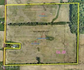 Twp Rd 391, Sullivan, OH 44880 (MLS #4215758) :: Keller Williams Chervenic Realty