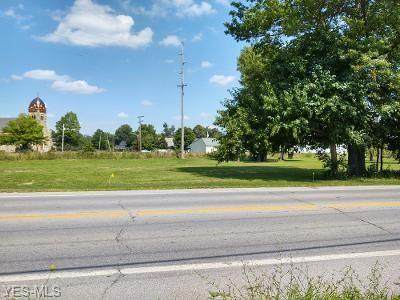 VL N Main Street, Grafton, OH 44044 (MLS #4216972) :: Krch Realty