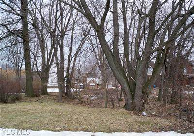 2409 3rd Street SE, Canton, OH 44707 (MLS #4220048) :: RE/MAX Trends Realty