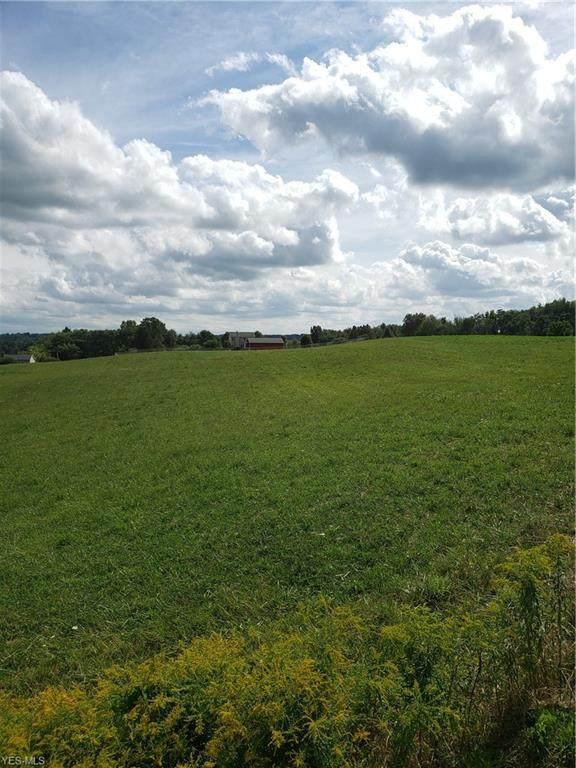 Waterloo Road, Mogadore, OH 44260 (MLS #4220885) :: Keller Williams Chervenic Realty