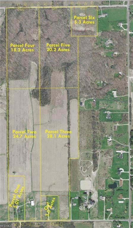 Crackel Road, Aurora, OH 44202 (MLS #4224711) :: RE/MAX Valley Real Estate