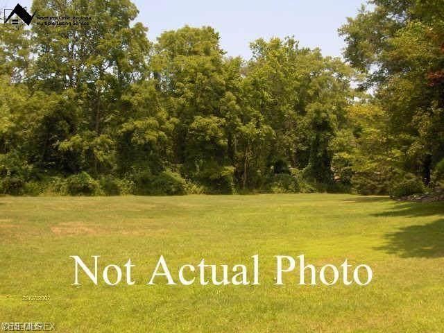 3761 Selnik Road, Brimfield, OH 44240 (MLS #4224786) :: Keller Williams Chervenic Realty
