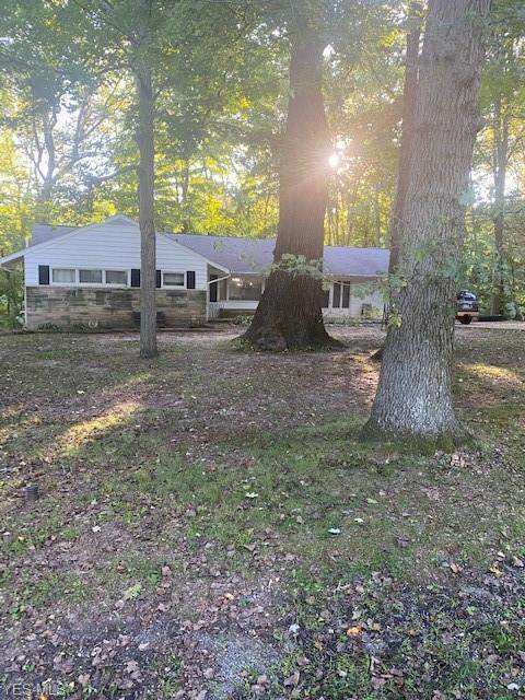 10961 Fernway Drive, Mantua, OH 44255 (MLS #4225349) :: Tammy Grogan and Associates at Cutler Real Estate