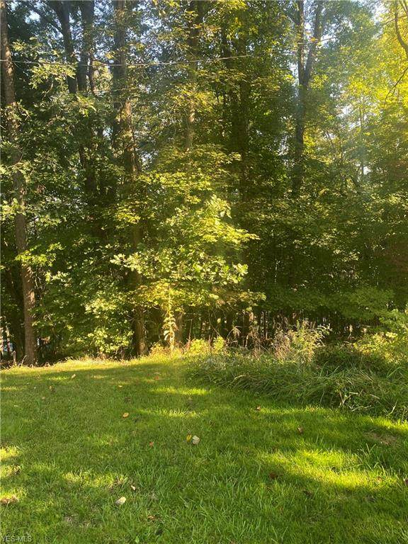 Ontario Trail Lot 1121, Malvern, OH 44644 (MLS #4227370) :: Krch Realty