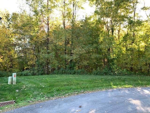 Jacobs Lane  #4Fr Lane, Kent, OH 44240 (MLS #4233172) :: RE/MAX Trends Realty
