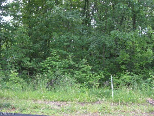 Lot 153 Prairie College Street SW, Canton, OH 44706 (MLS #4236185) :: The Holden Agency