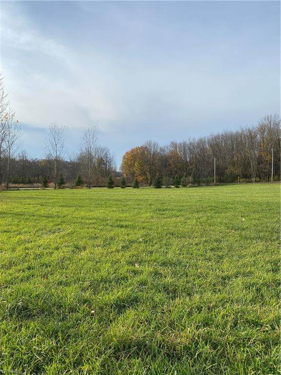 46089 Metz Road, Columbiana, OH 44408 (MLS #4238221) :: RE/MAX Trends Realty