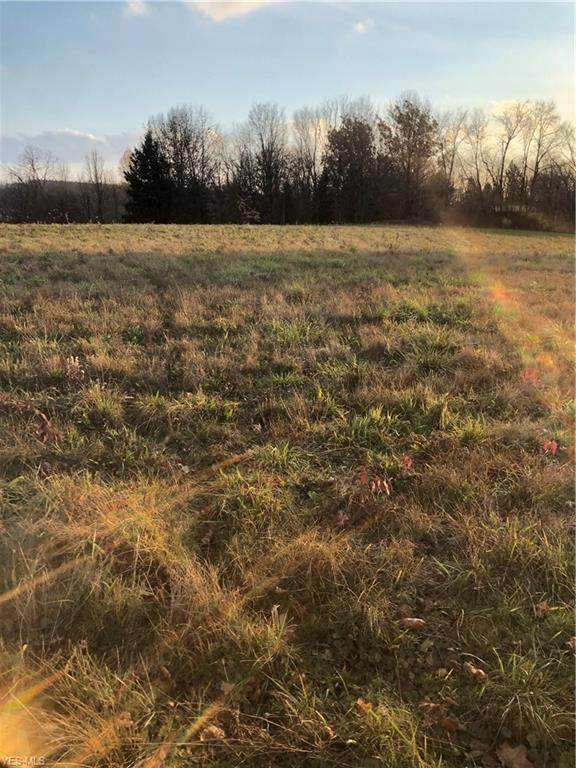 Seville Road Lot 2, Wadsworth, OH 44281 (MLS #4238484) :: RE/MAX Edge Realty