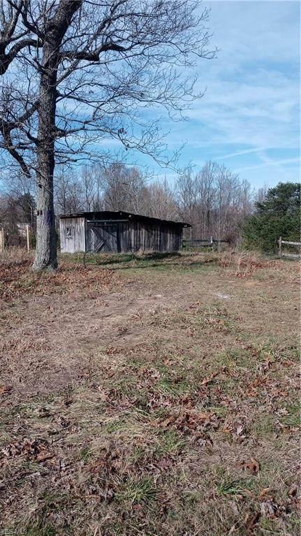 1155 Gooseneck Run Road, Walker, WV 26180 (MLS #4242164) :: RE/MAX Edge Realty